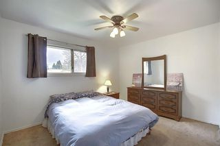Photo 12: 68 Ferncliff Crescent SE in Calgary: Fairview Detached for sale : MLS®# A1040118