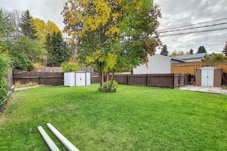Photo 27: 68 Ferncliff Crescent SE in Calgary: Fairview Detached for sale : MLS®# A1040118