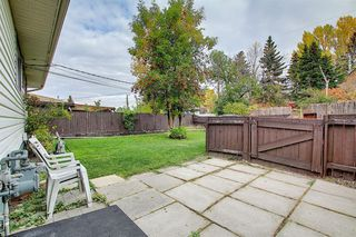 Photo 26: 68 Ferncliff Crescent SE in Calgary: Fairview Detached for sale : MLS®# A1040118