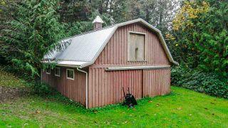 Photo 6: 11179 286 Street in Maple Ridge: Whonnock House for sale : MLS®# R2510501