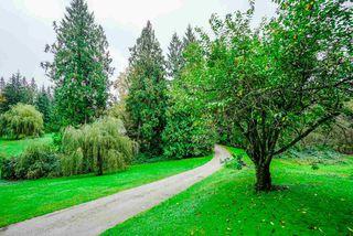 Photo 4: 11179 286 Street in Maple Ridge: Whonnock House for sale : MLS®# R2510501