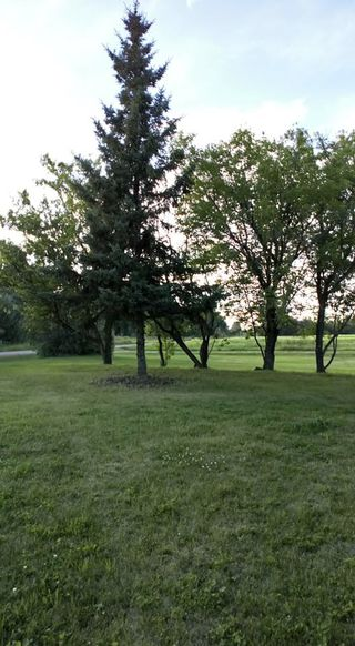 Photo 18: RR 225 Twp Rd 610: Rural Thorhild County Rural Land/Vacant Lot for sale : MLS®# E4191900