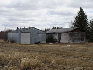 Photo 4: RR 225 Twp Rd 610: Rural Thorhild County Rural Land/Vacant Lot for sale : MLS®# E4191900