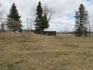 Photo 10: RR 225 Twp Rd 610: Rural Thorhild County Rural Land/Vacant Lot for sale : MLS®# E4191900