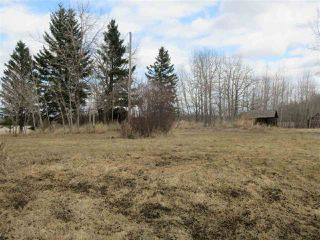 Photo 8: RR 225 Twp Rd 610: Rural Thorhild County Rural Land/Vacant Lot for sale : MLS®# E4191900