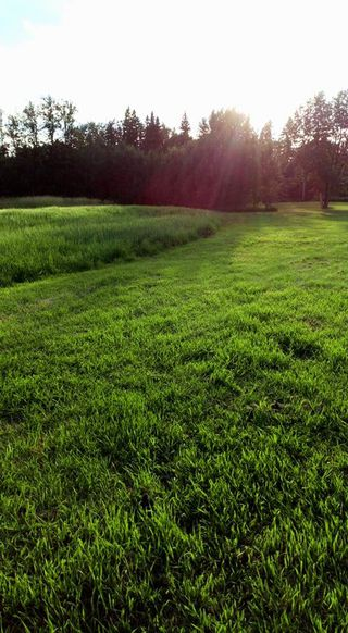 Photo 24: RR 225 Twp Rd 610: Rural Thorhild County Rural Land/Vacant Lot for sale : MLS®# E4191900