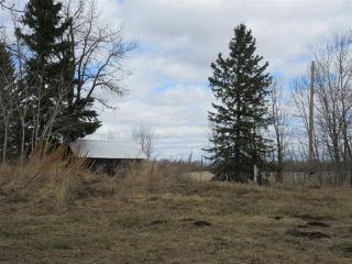 Photo 9: RR 225 Twp Rd 610: Rural Thorhild County Rural Land/Vacant Lot for sale : MLS®# E4191900
