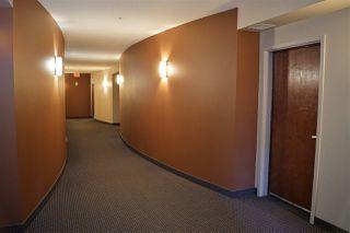 Photo 29: 303 9910 111 Street in Edmonton: Zone 12 Condo for sale : MLS®# E4198341