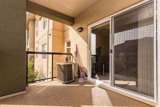 Photo 19: 303 7909 71 ST NW Street in Edmonton: Zone 17 Condo for sale : MLS®# E4214754