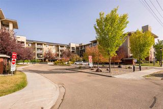 Photo 2: 303 7909 71 ST NW Street in Edmonton: Zone 17 Condo for sale : MLS®# E4214754