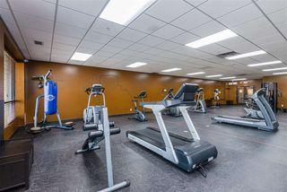 Photo 41: 303 7909 71 ST NW Street in Edmonton: Zone 17 Condo for sale : MLS®# E4214754