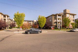 Photo 1: 303 7909 71 ST NW Street in Edmonton: Zone 17 Condo for sale : MLS®# E4214754