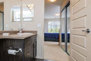 Photo 28: 303 7909 71 ST NW Street in Edmonton: Zone 17 Condo for sale : MLS®# E4214754