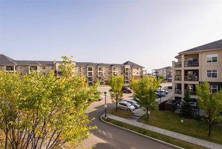 Photo 22: 303 7909 71 ST NW Street in Edmonton: Zone 17 Condo for sale : MLS®# E4214754