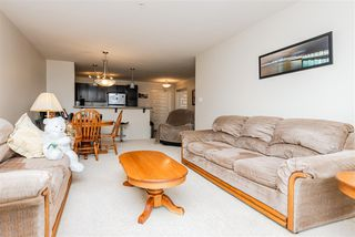 Photo 16: 303 7909 71 ST NW Street in Edmonton: Zone 17 Condo for sale : MLS®# E4214754