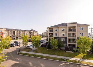 Photo 23: 303 7909 71 ST NW Street in Edmonton: Zone 17 Condo for sale : MLS®# E4214754