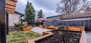 Photo 5: 2028 50 Avenue SW in Calgary: Altadore Detached for sale : MLS®# A1059590