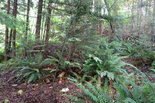 "Photo 9: LOT 58 DEERHORN Road in Sechelt: Sechelt District Land for sale in ""SANDYHOOK"" (Sunshine Coast)  : MLS®# R2477414"