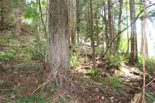 "Photo 6: LOT 58 DEERHORN Road in Sechelt: Sechelt District Land for sale in ""SANDYHOOK"" (Sunshine Coast)  : MLS®# R2477414"