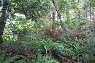 "Photo 8: LOT 58 DEERHORN Road in Sechelt: Sechelt District Land for sale in ""SANDYHOOK"" (Sunshine Coast)  : MLS®# R2477414"