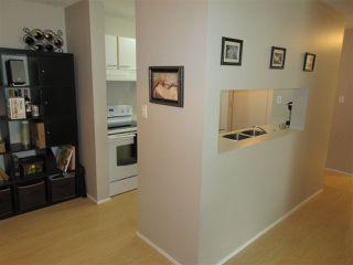 Photo 5: 105 6710 158 Avenue in Edmonton: Zone 28 Condo for sale : MLS®# E4212547