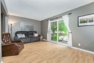Photo 20: 41 17 Quail Drive in Hamilton: House for sale : MLS®# H4087772