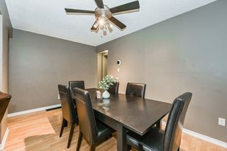 Photo 16: 41 17 Quail Drive in Hamilton: House for sale : MLS®# H4087772