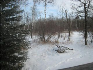 Photo 8: 68133 RD 40 E Road in BEAUSEJOUR: Beausejour / Tyndall Residential for sale (Winnipeg area)  : MLS®# 1000342