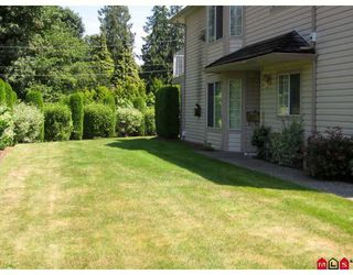 "Photo 1: 59 3110 TRAFALGAR Street in Abbotsford: Central Abbotsford Townhouse for sale in ""NORTHVIEW"" : MLS®# F2914124"