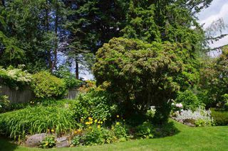Photo 4: 2617 LAURALYNN Drive in North Vancouver: Westlynn House for sale : MLS®# R2467317
