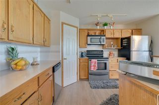 Photo 22: 452 CALIFORNIA Place NE in Calgary: Monterey Park Detached for sale : MLS®# C4304967