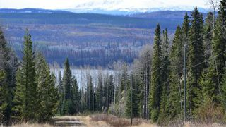 "Photo 4: LOT 8 BRYANSTON Drive in Burns Lake: Burns Lake - Rural South Land for sale in ""NORALEE ESTATES"" (Burns Lake (Zone 55))  : MLS®# R2471190"