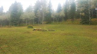 "Photo 13: LOT 8 BRYANSTON Drive in Burns Lake: Burns Lake - Rural South Land for sale in ""NORALEE ESTATES"" (Burns Lake (Zone 55))  : MLS®# R2471190"