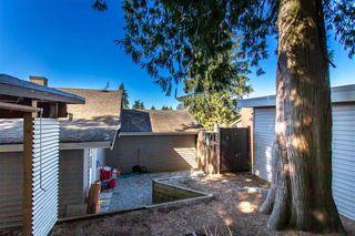Photo 17: 11336 MELVILLE Street in Maple Ridge: Southwest Maple Ridge House for sale : MLS®# R2495503