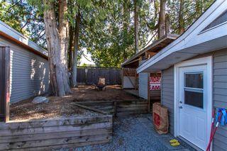 Photo 16: 11336 MELVILLE Street in Maple Ridge: Southwest Maple Ridge House for sale : MLS®# R2495503