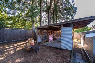 Photo 14: 11336 MELVILLE Street in Maple Ridge: Southwest Maple Ridge House for sale : MLS®# R2495503