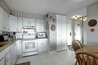 Photo 12: 1906 80 POINT MCKAY Crescent NW in Calgary: Point McKay Apartment for sale : MLS®# A1035263