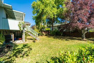 Photo 21: 3377 Maplewood Rd in : SE Cedar Hill House for sale (Saanich East)  : MLS®# 859249