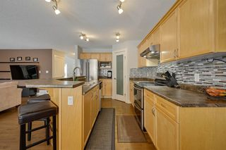 Photo 24: 8376 SHASKE Crescent in Edmonton: Zone 14 House for sale : MLS®# E4221136