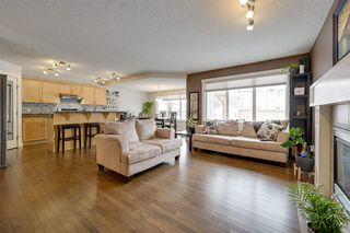 Photo 15: 8376 SHASKE Crescent in Edmonton: Zone 14 House for sale : MLS®# E4221136
