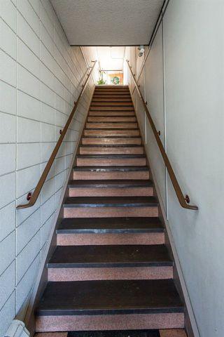 Photo 5: 3 9531 76 Avenue in Edmonton: Zone 17 Condo for sale : MLS®# E4222015