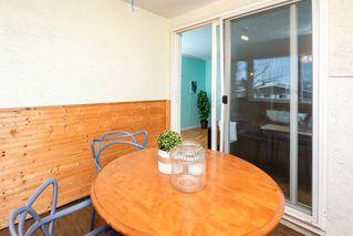 Photo 22: 3 9531 76 Avenue in Edmonton: Zone 17 Condo for sale : MLS®# E4222015