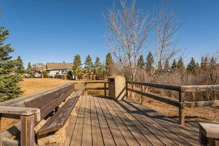 Photo 41: 3 9531 76 Avenue in Edmonton: Zone 17 Condo for sale : MLS®# E4222015
