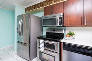 Photo 16: 3 9531 76 Avenue in Edmonton: Zone 17 Condo for sale : MLS®# E4222015