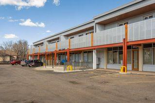 Photo 47: 3 9531 76 Avenue in Edmonton: Zone 17 Condo for sale : MLS®# E4222015