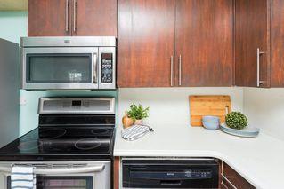 Photo 17: 3 9531 76 Avenue in Edmonton: Zone 17 Condo for sale : MLS®# E4222015
