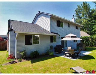 Photo 10: 9326 211TH Street in Langley: Walnut Grove House for sale : MLS®# F2912633
