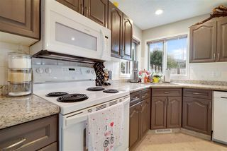 Photo 5: 172 ORMSBY Road in Edmonton: Zone 20 House for sale : MLS®# E4179261