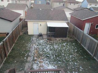 Photo 15: 3559 13 Street in Edmonton: Zone 30 House for sale : MLS®# E4180774