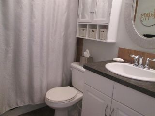 Photo 14: 3559 13 Street in Edmonton: Zone 30 House for sale : MLS®# E4180774